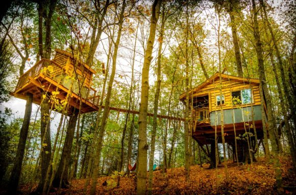 Photo: Earth Joy Tree Adventures