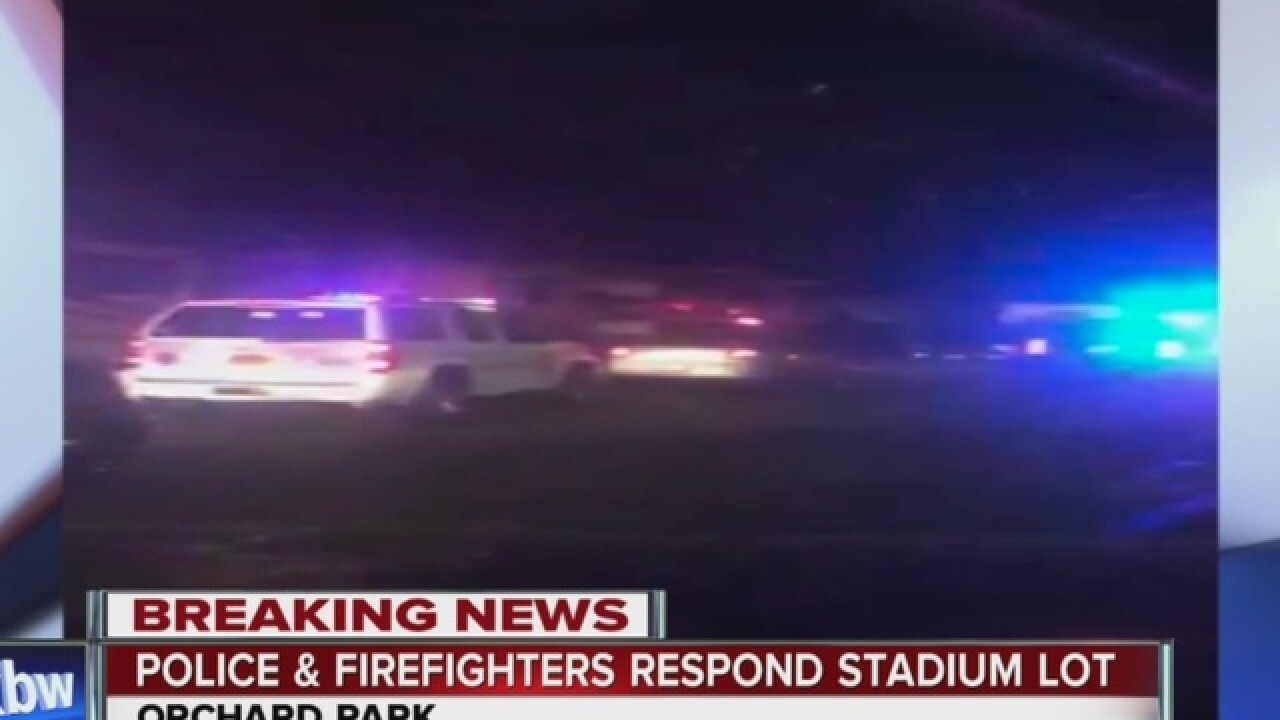 Deputy commits suicide at Ralph Wilson Stadium