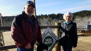 Pat and Judy McKelvey, 2020 Tree Farmers of the Year