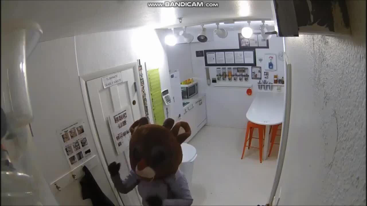 Reindeer suspect in Fort Collins