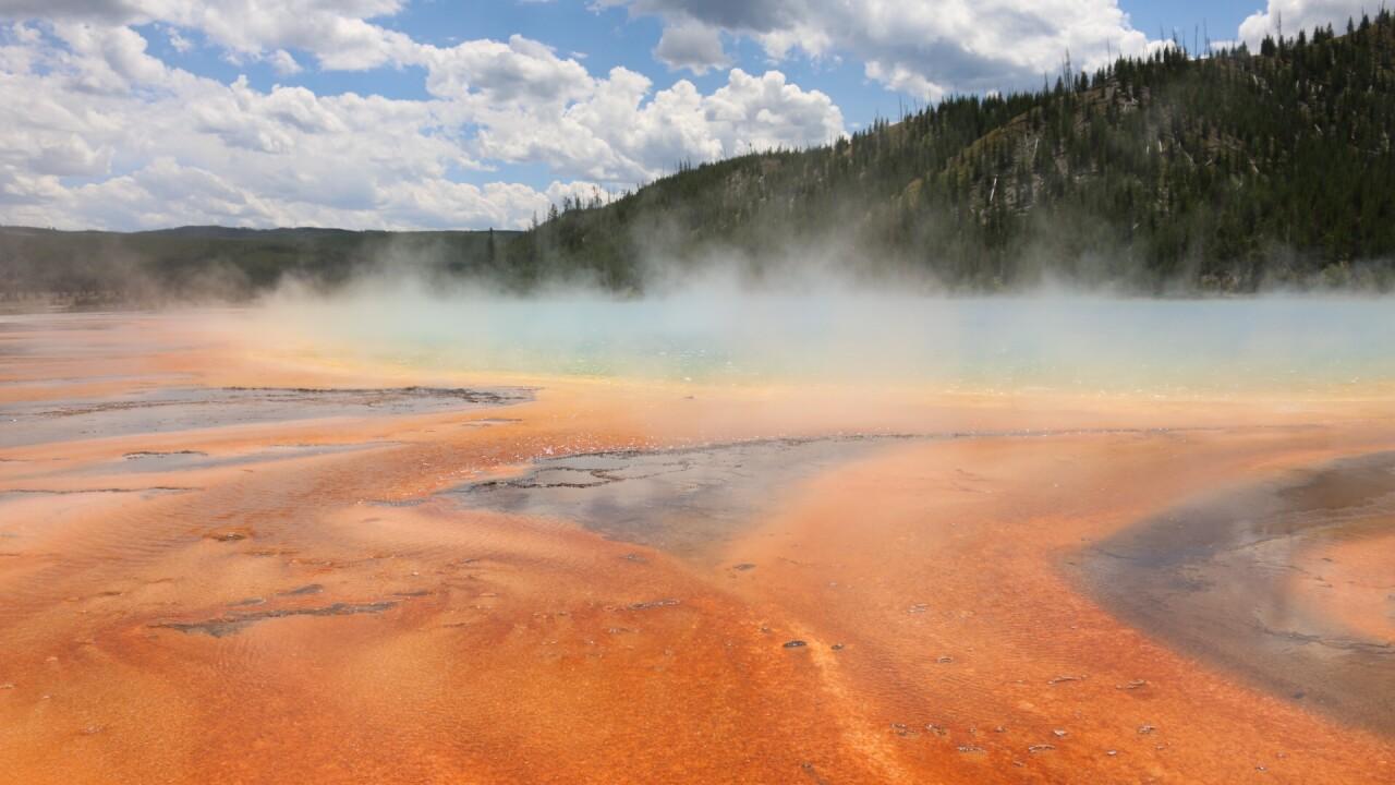 Happy Birthday Yellowstone Park