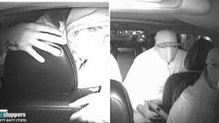 Bronx livery cab robbery.jpg
