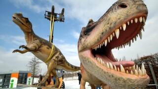 T Rex Billions