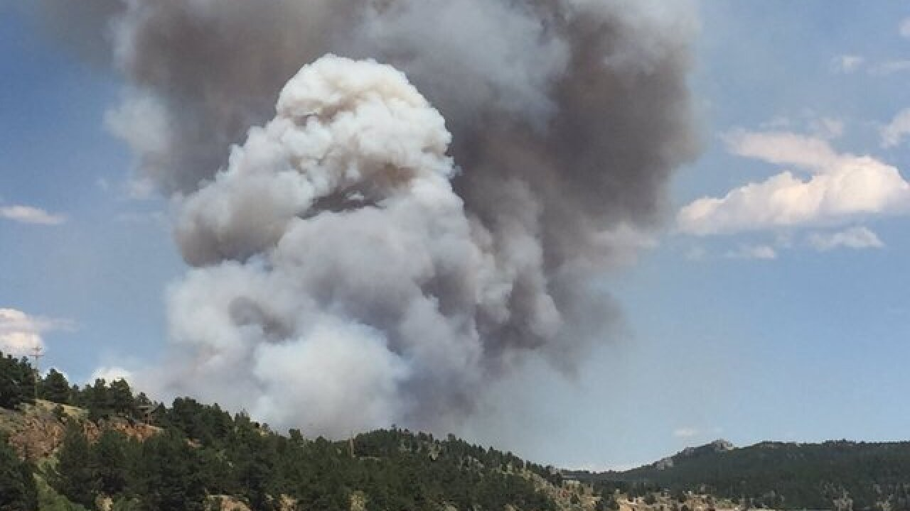 Cold Springs Fire burns 600 acres, 2 arrested