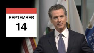 Recall election calendar