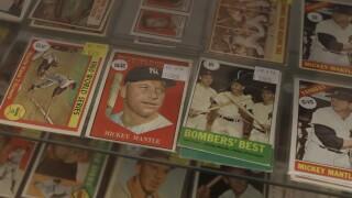 FILE Baseball Trading Cards
