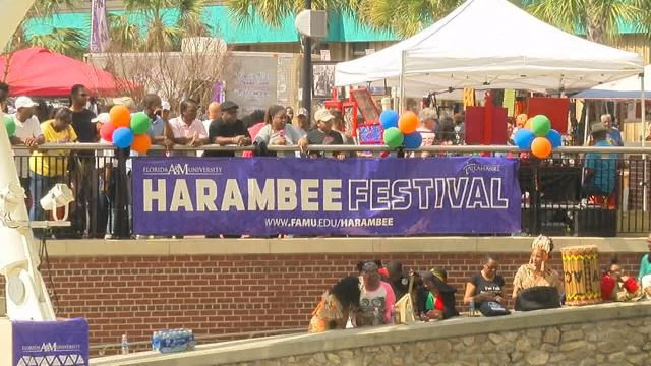 """African Culture Brought to Life at FAMU's Annual """"Harambee Festival"""""""