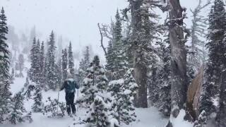 Weather Wise: Winter Tourism in Montana