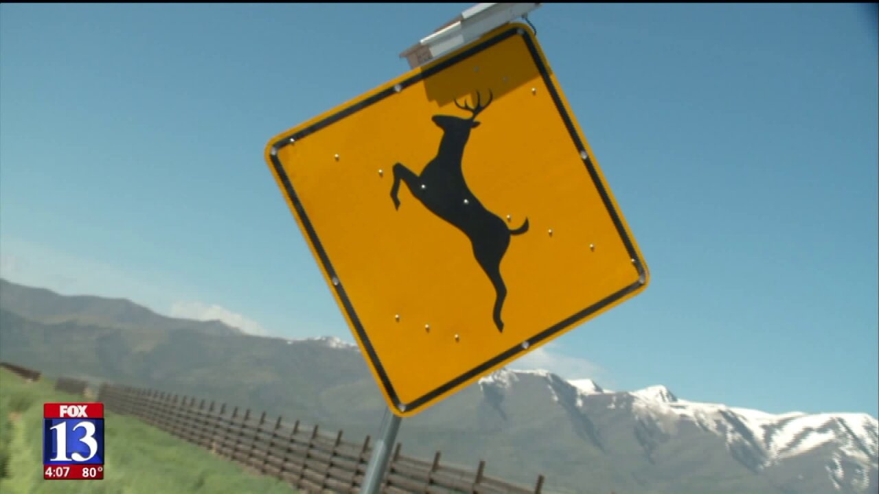 New warning signs have radar to alert drivers when wildlife isnearby