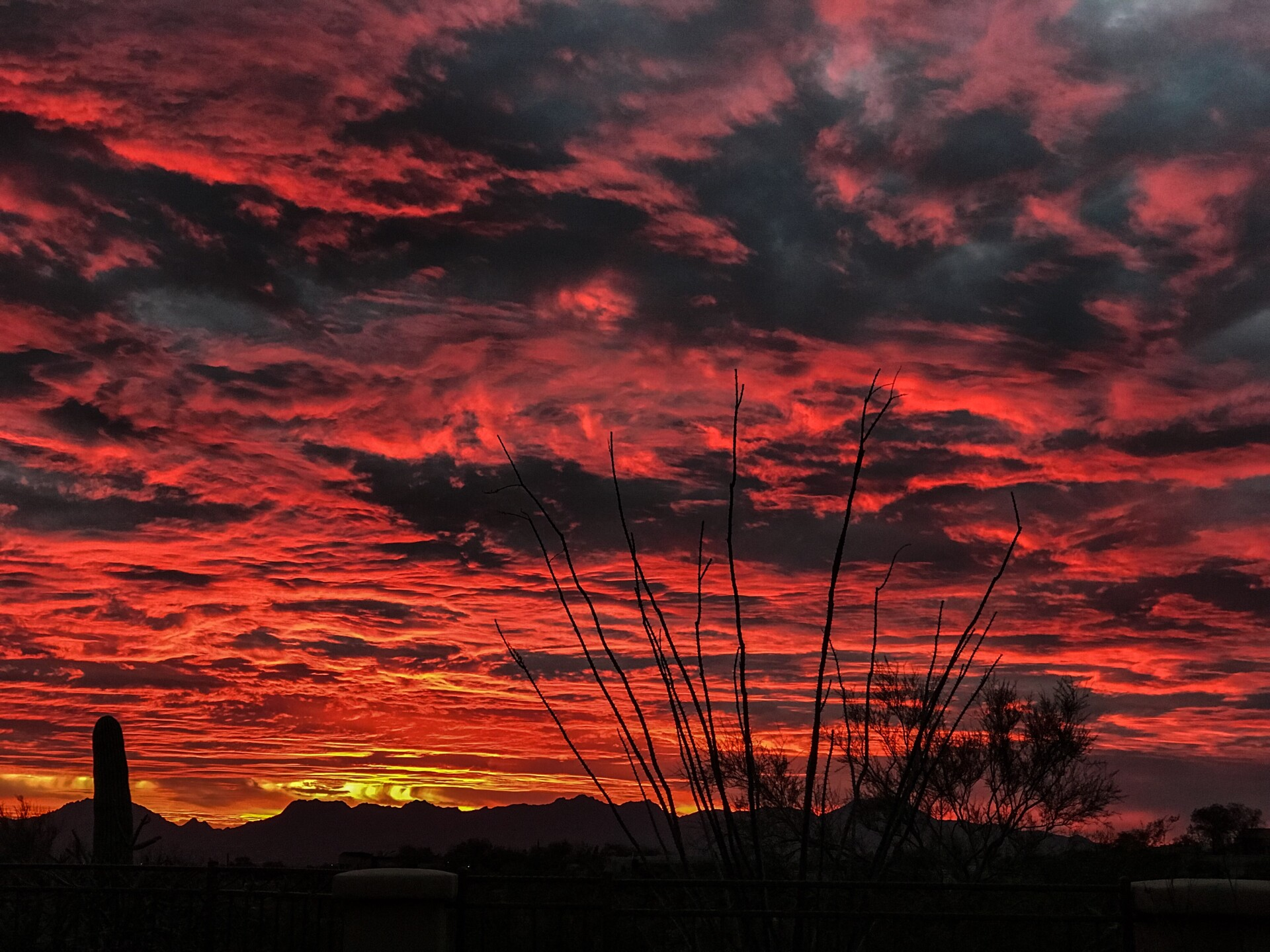 Tucson Sunsets from January 30th