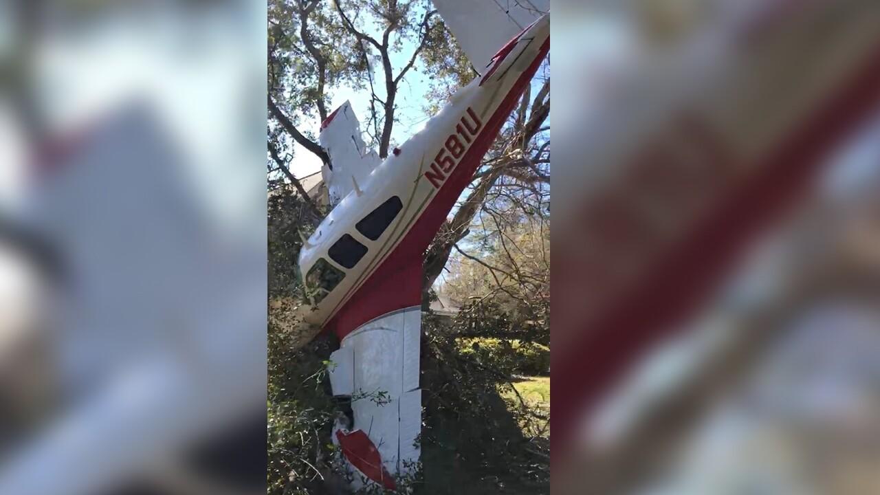 wptv-plane-crashes-tree.jpg