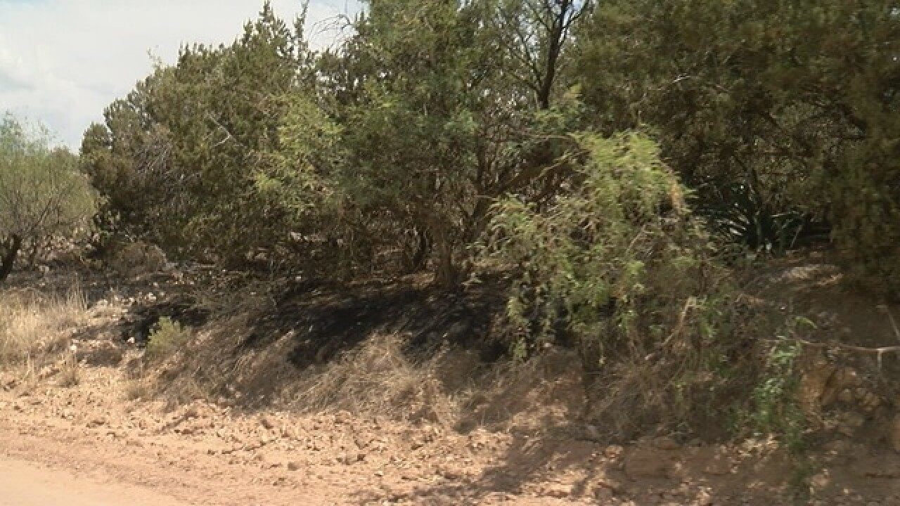Fire near Redington Road grows to 20 acres