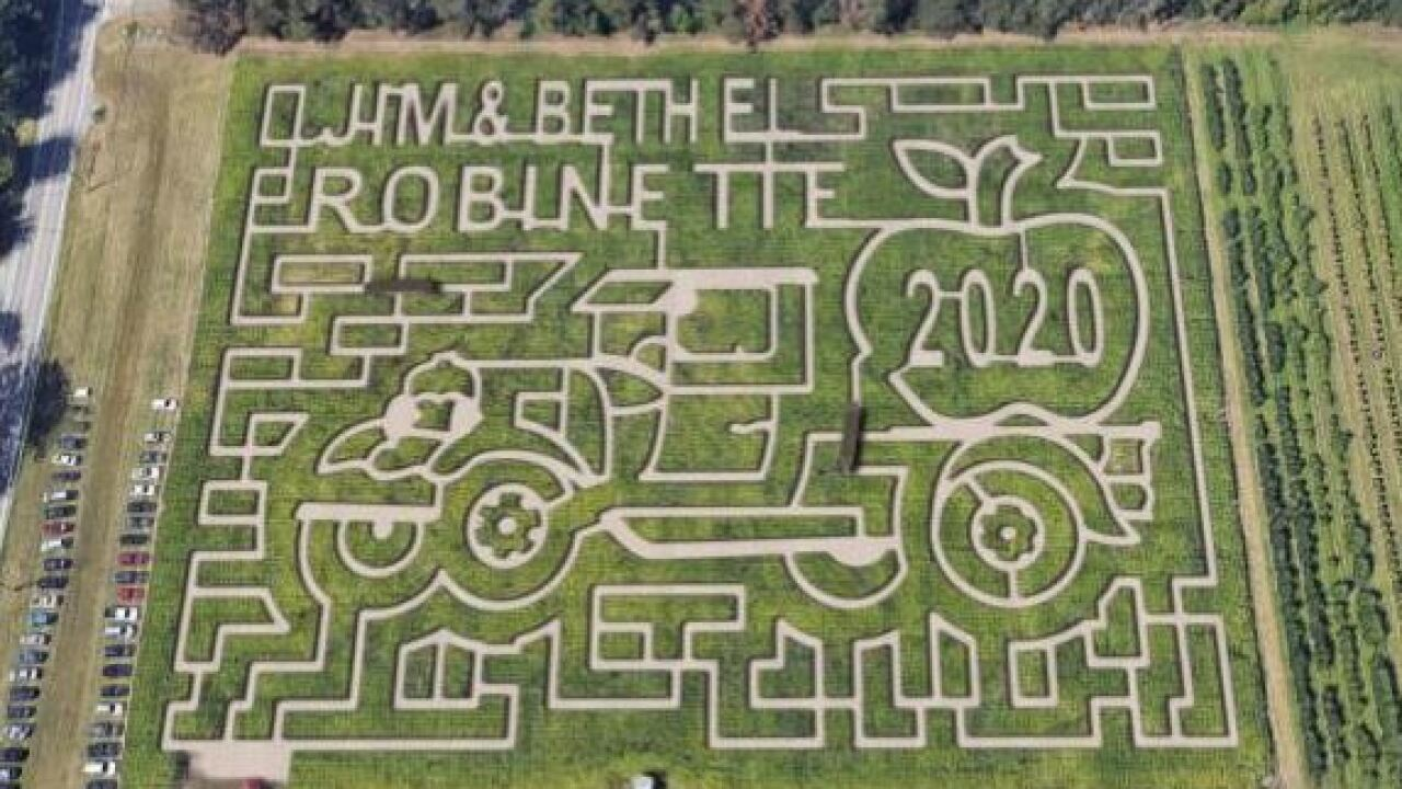 Robinette's Apple Haus & Winery dedicating corn maze design to late owners