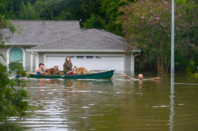 Photos: Hurricane Harvey's devastation across Texas