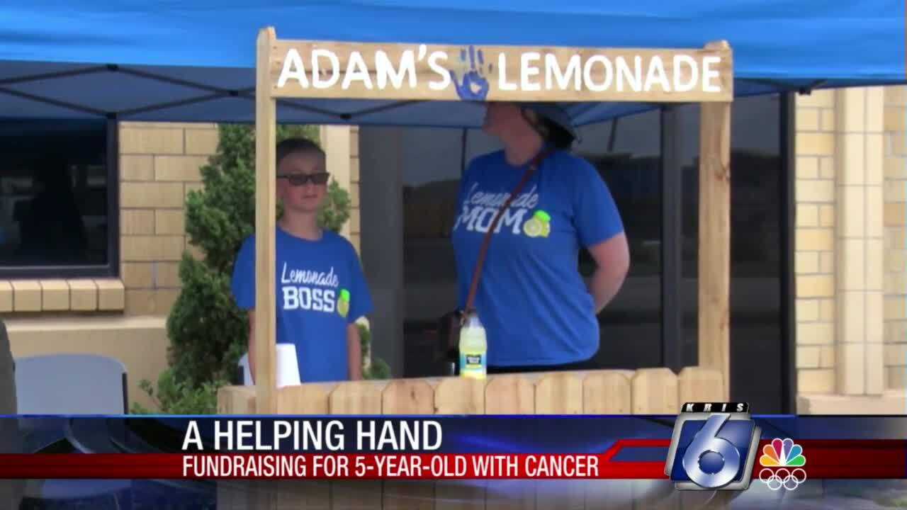 Adam's Lemonade Stand benefits friend's family battling cancer