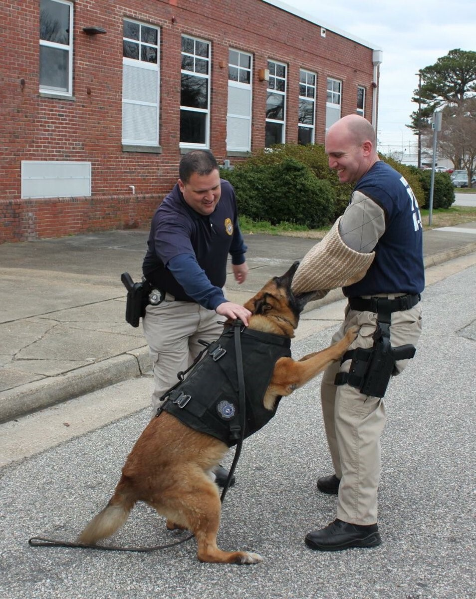 Photos: Newport News K9 retires after 11 years on the force
