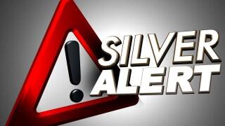 file stock image generic graphic silver alert.jpg