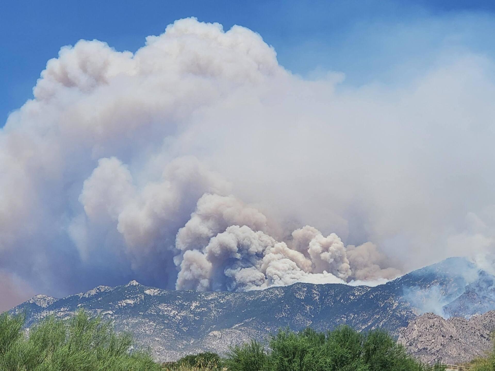 The Bighorn Fire burns heavy fuel along the La Canada Del Oro Ridge on Wednesday, June 17, 2020.