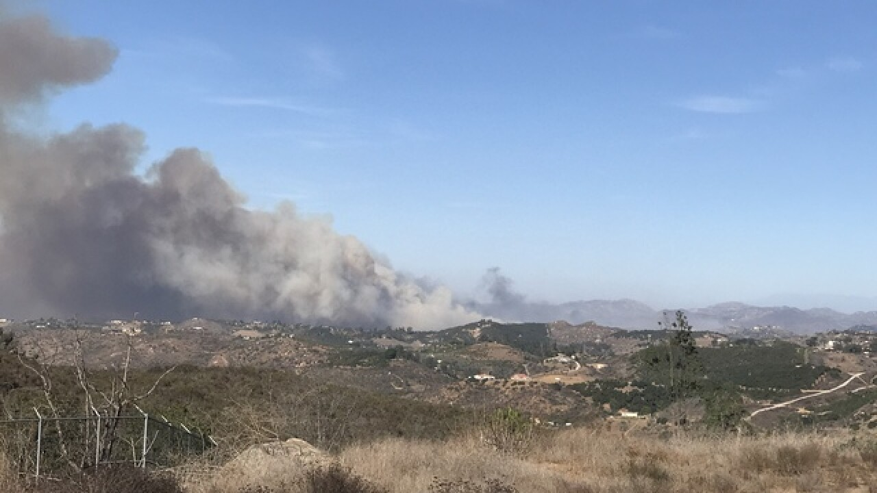 Brush fire breaks out along I-15 in Fallbrook