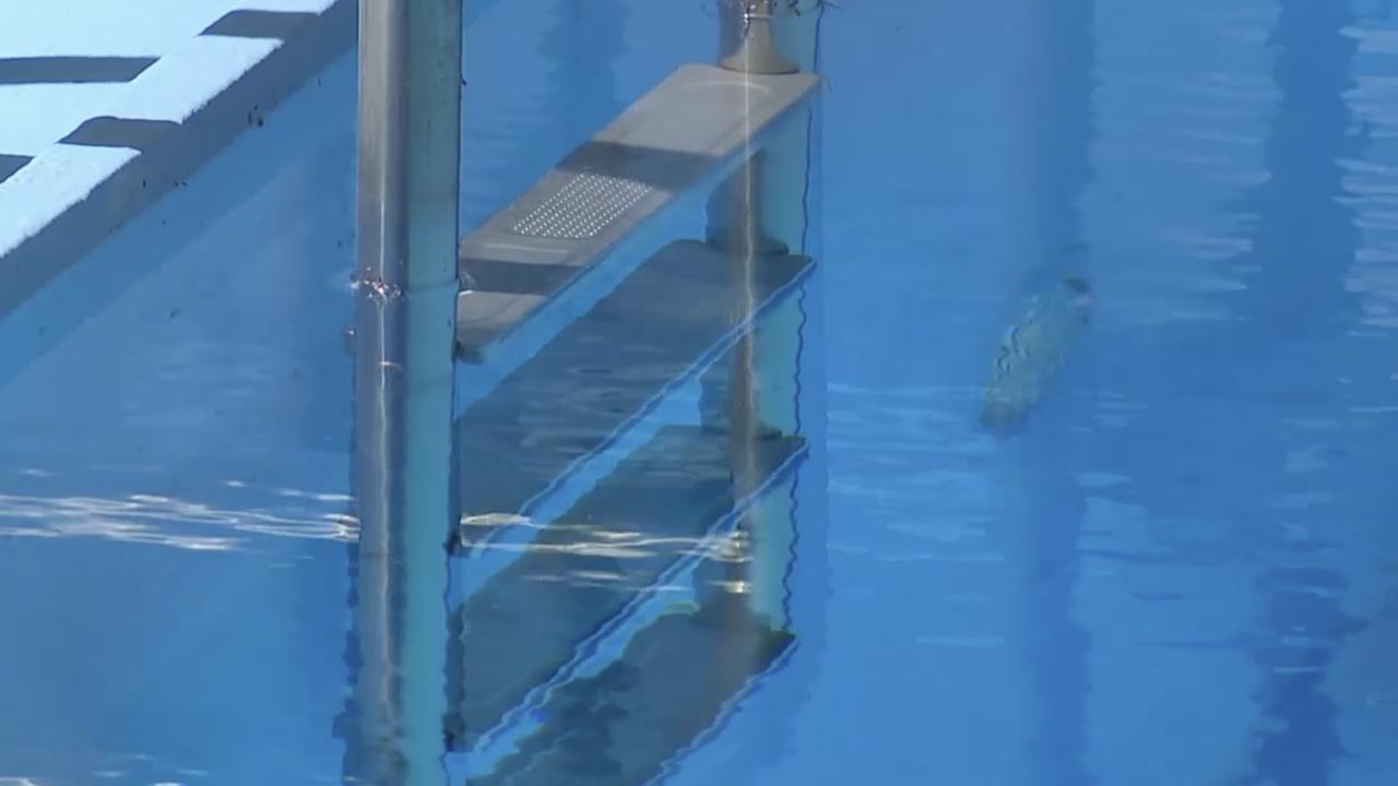 swimming pool ladder KCK.png