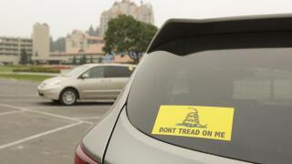don't tread on me car.jpeg