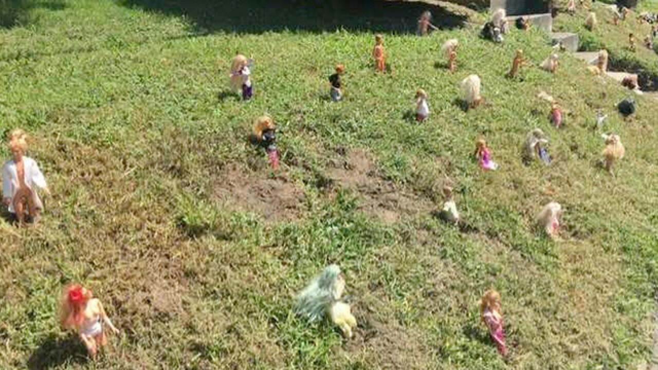 Former Thrift Store Owner Turns Yard Into 'Barbie Garden'