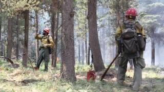 goose firefighters.jpg