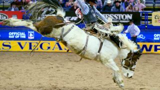 1 Chase Brooks 90.00 Outlawbuckers Rodeo Lunatic Party 4 web.jpg