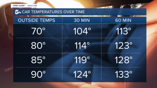 hot car temperatures