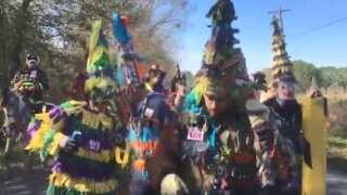Video: Eunice Courir de Mardi Gras
