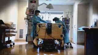 Hospitalization_frame_581.jpeg