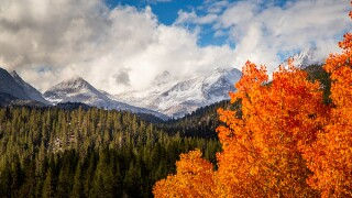 PHOTOS: Fall foliage hits the Sierras