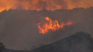 pacific palisades wildfire