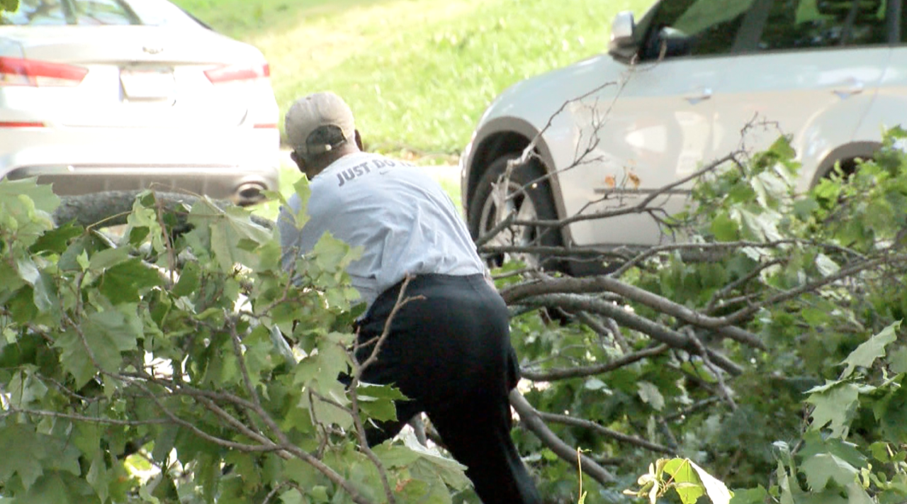 Albert Jackson pulls tree branches out of the way so he can get to the grocery store