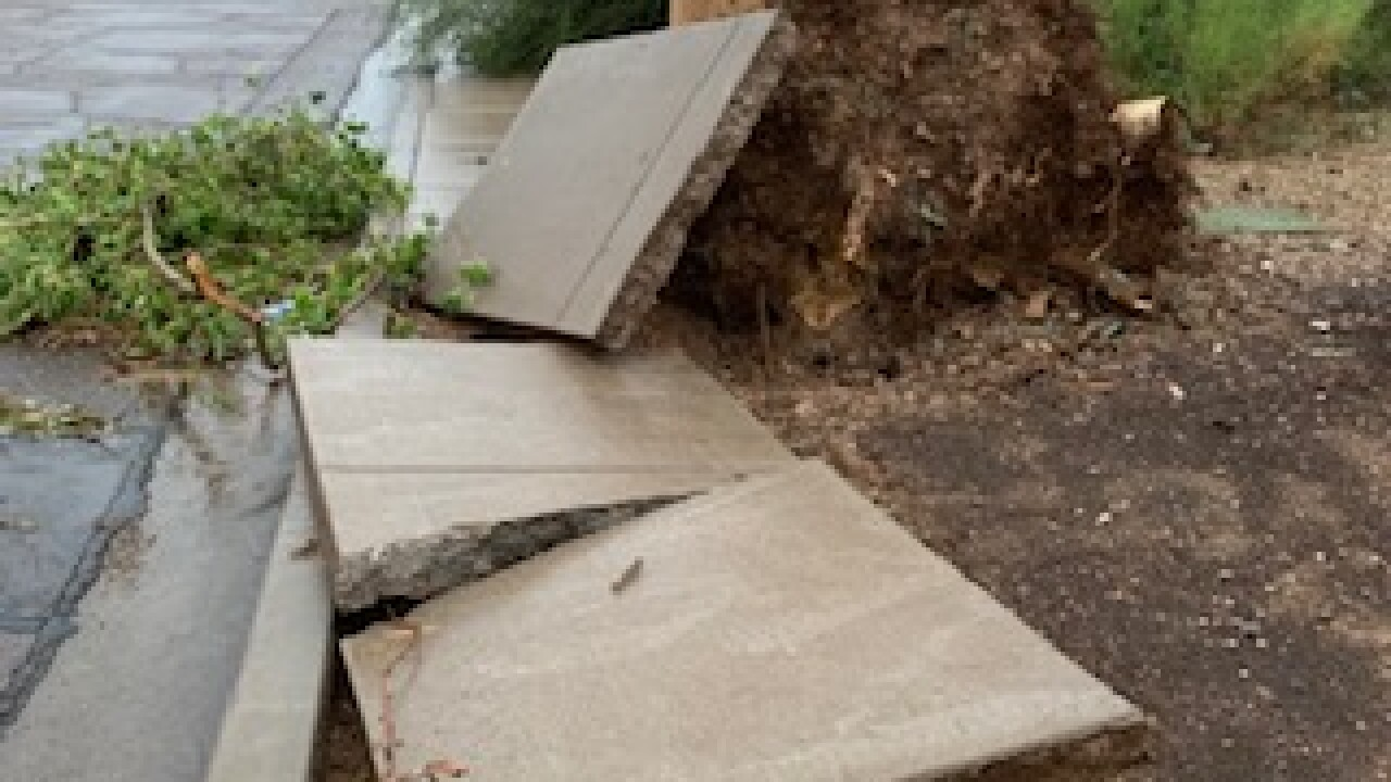 NWS: Two East Valley tornadoes confirmed from Friday morning winter storms
