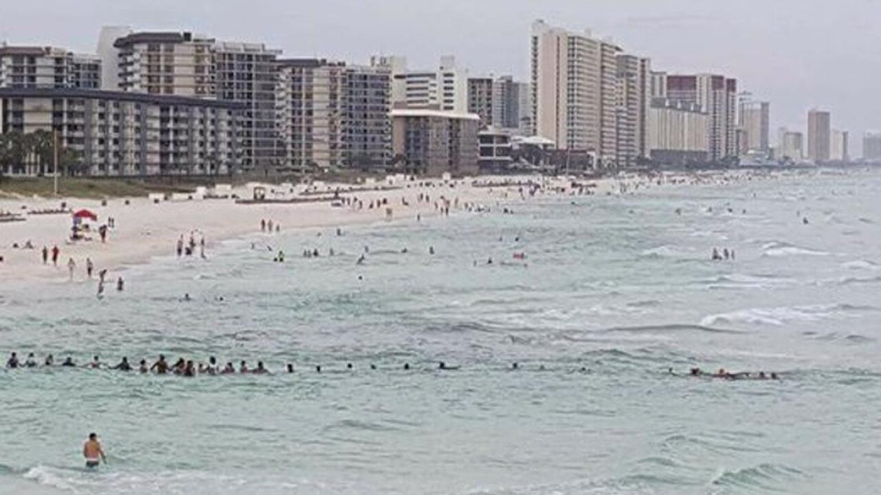 More than 80 beachgoers form human chain to rescue family trapped in riptide