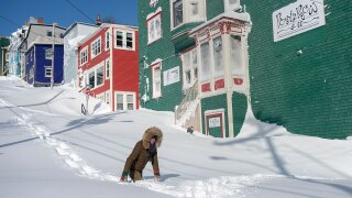 Residents are digging out of record-breaking snowfall in Newfoundland, Canada