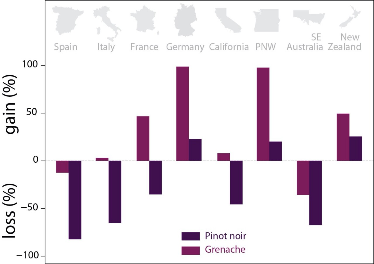 Changes in suitability for different wine-growing regions