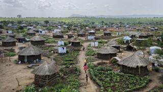 Uganda South Sudan Unaccompanied Children