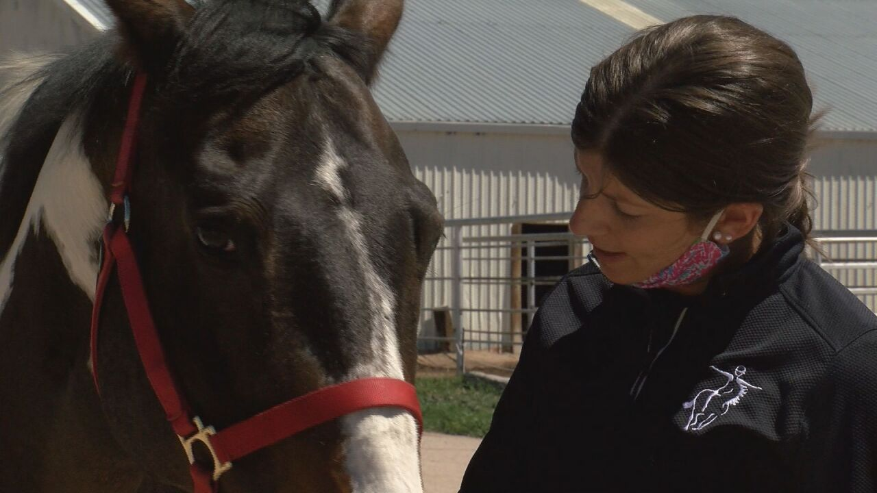 Horses helping people rebound from mental health challenges