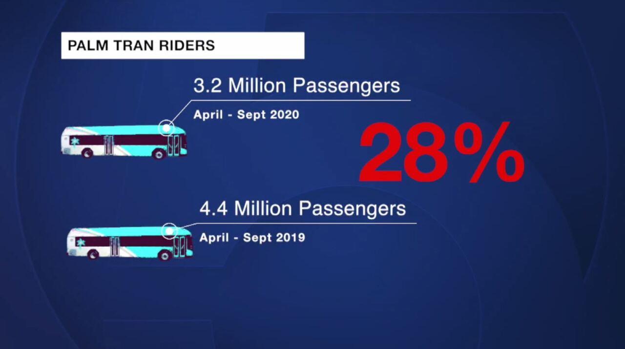 'Palm Tran Riders' graphic