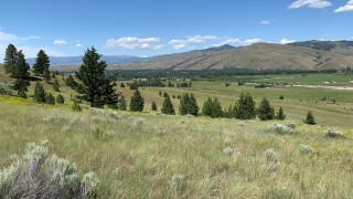 Maclay Ranch Conservation