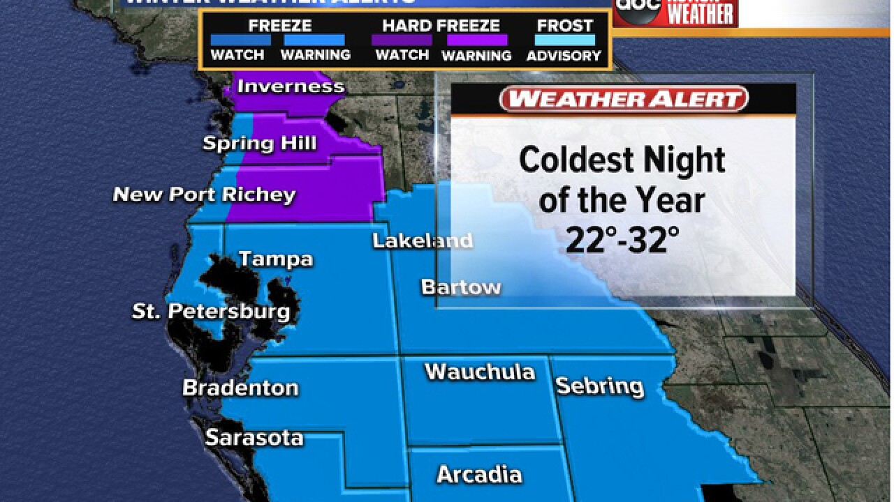 Freeze Watch issued for Tampa Bay