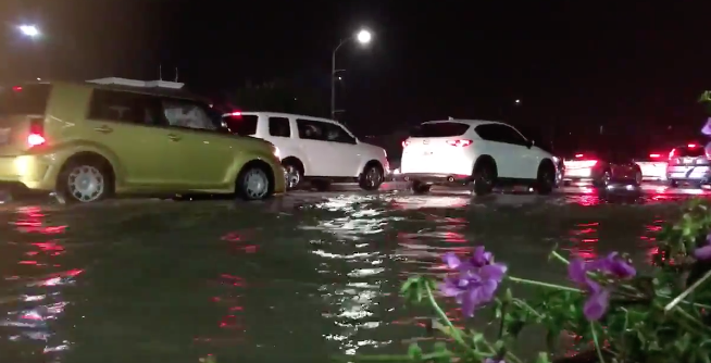 Bonita flood