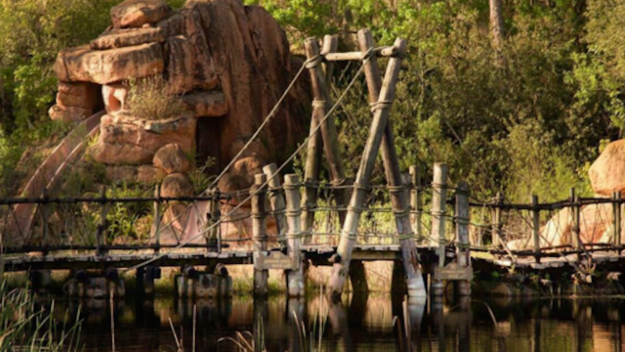 PHOTOS: Nature reclaims abandoned Disney park