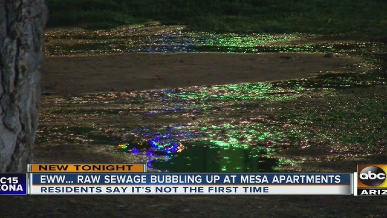 Mesa apt residents fed up with raw sewage issue