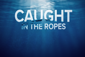 Caught In The Ropes