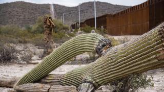 Arizona Border wall and the environment