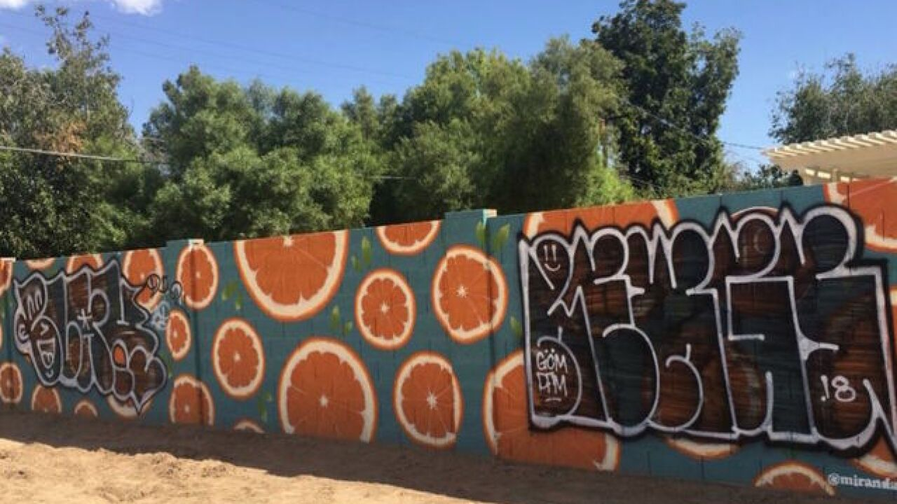 Phoenix community goes after graffiti artist online after mural is vandalized