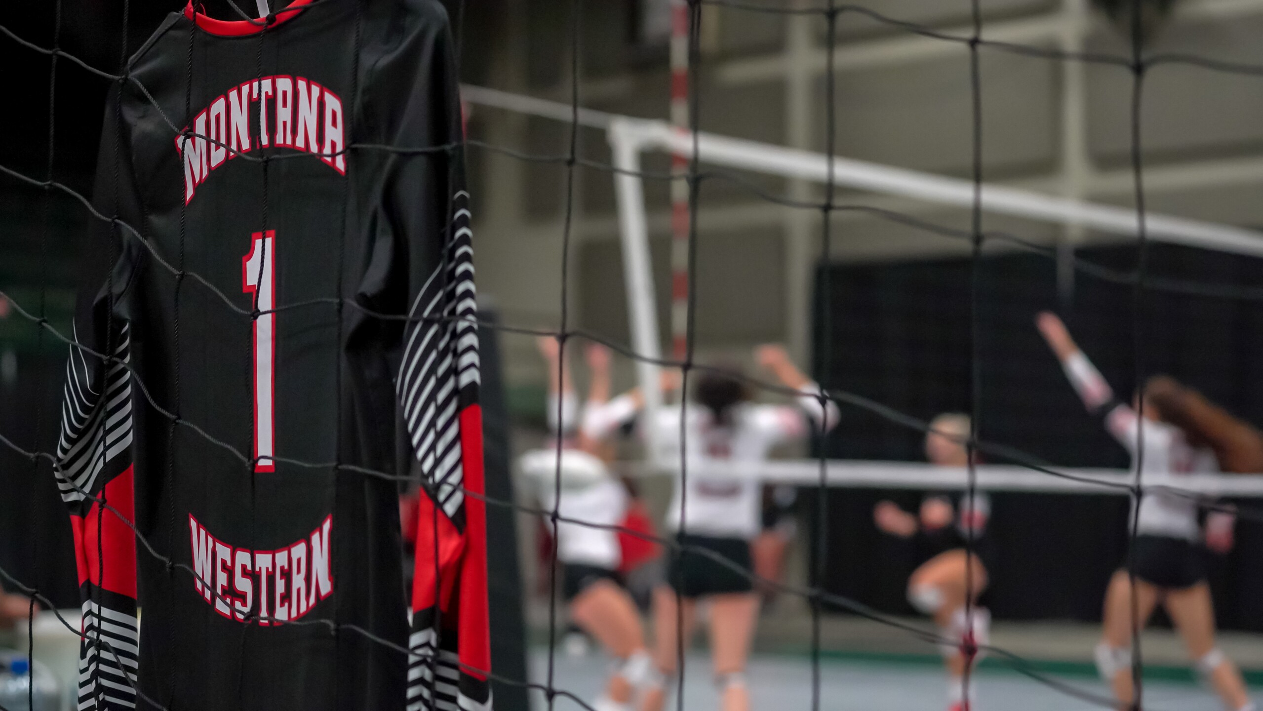 Montana Western volleyball
